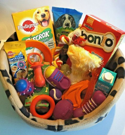 PUPPY STARTER SET WITH PUPPY BED FILLED WITH PUPPY TREATS PUPPY MILK AND TOYS